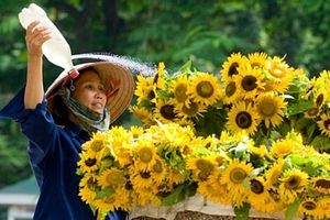 Thương lắm gánh hàng hoa