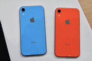 Ảnh thực tế iPhone XR - chiếc smartphone thú vị của Apple
