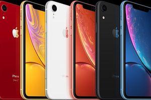 Apple ra mt nhiu iPhone mi