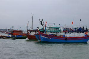 Ngăn chặn khai thác thủy sản trái pháp luật khu vực biên giới biển