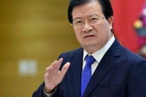 Dịch tả lợn tiến sát biên giới Việt-Trung, Phó Thủ tướng nói gì?