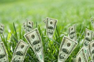 CTCP Xây dựng Công nghiệp (ICC) trả cổ tức 58% bằng tiền