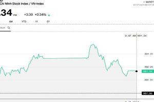 Cầu vào vẫn ủng hộ thị trường, Vn-Index đóng cửa trên 990 điểm