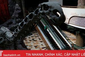 Khám phá bảo tàng lịch sử tự nhiên ở 'quốc gia bí ẩn nhất thế giới'