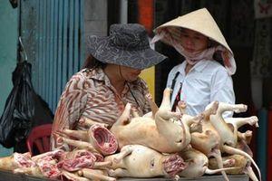 Lý giải bất ngờ của Hà Nội về đề xuất cấm ăn thịt chó