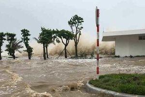 Dự báo thời tiết 15/9: Siêu bão Mangkhut đi vào khu vực Đông Bắc của Biển Đông