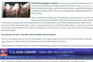 Dịch tả lợn châu Phi đe dọa Châu Á