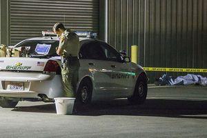 Xả súng khiến 5 người thiệt mạng ở California (Mỹ)