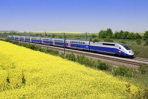 Công nghệ tàu Shinkansen của Nhật và TGV của Pháp khác gì nhau?