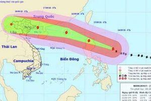 Hải Phòng: Phê bình chủ tịch huyện không họp phòng chống bão Mangkhut