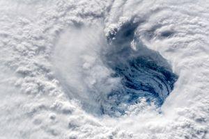 Uy lực xe tăng Nga, mắt bão Florence 'sởn gai ốc' vào top ảnh tuần