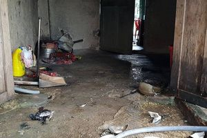 Đắk Nông: Nam thanh niên tạt xăng đốt người tình do níu kéo tình cảm bất thành