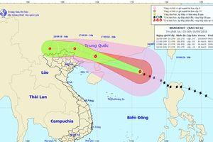 Ảnh hưởng bão số 6, biển động rất mạnh, Bắc Bộ có mưa lớn diện rộng, vùng núi đề phòng lũ quét, sạt lở đất