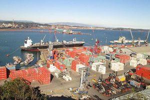 Kiến nghị thu hồi 75% cổ phần Cảng Quy Nhơn đã bán trái thẩm quyền