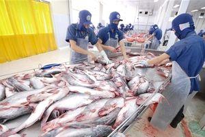 Hoa Kỳ giảm mạnh thuế mặt hàng cá tra - basa của Việt Nam