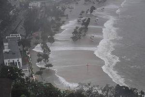 Sức tàn phá kinh hoàng của trận siêu bão Mangkhut