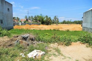 Bình Định: Khởi tố, bắt tạm giam cán bộ địa chính thị trấn Phù Mỹ về tội tham ô tài sản