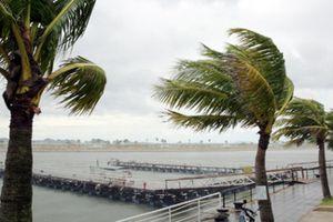 Dự báo thời tiết hôm nay 17/9: Hoàn lưu bão số 6 gây mưa to nhiều nơi, gió giật mạnh