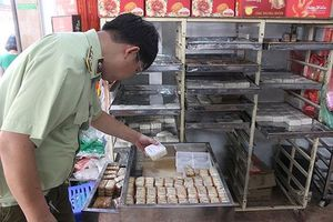 Bánh Trung thu 'ngoại' 3.000 đồng/chiếc, sử dụng... vô thời hạn