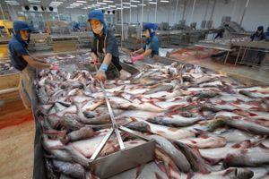 Xuất khẩu thủy sản sang Asean có thể đạt 1 tỷ đô