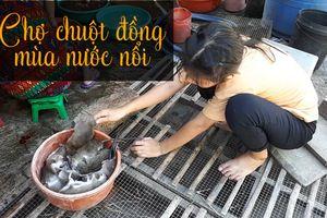 Nhộn nhịp chợ chuột đồng miền Tây mùa nước nổi