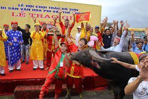Lễ hội chọi trâu Đồ Sơn 2018: Thịt trâu chọi được 'hét' 2-2,5 triệu đồng/kg