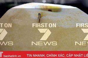 Sau dâu tây, Australia lại phát hiện thấy kim khâu trong quả táo