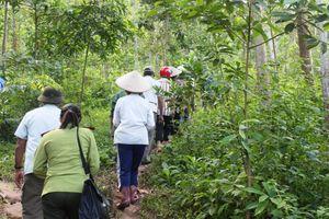 Huyện Điện Biên: Phát huy hiệu quả chính sách chi trả DVMTR