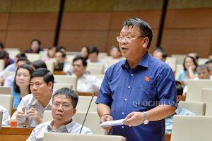 Đbqh Nguyễn Tạo - lâm đồng: cần sớm tổng kết, đánh giá chương trình hỗ trợ dân di cư tự do