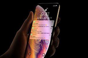 iPhone XS Max là sản phẩm nặng ký nhất xưa nay