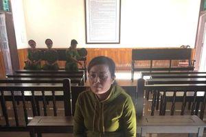 Hà Tĩnh: U50 buôn ma túy lĩnh án chung thân