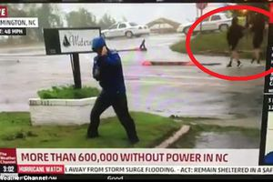 Phóng viên 'diễn sâu' khi đưa tin về bão, bị 'lật tẩy' bất ngờ