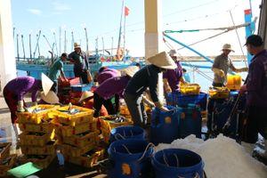Tàu cá vi phạm vùng biển nước ngoài giảm
