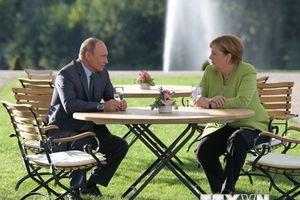 Lãnh đạo Nga, Đức thảo luận về thỏa thuận hòa bình tại Idlib của Syria