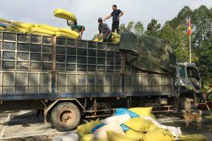 Tạm giữ 3 ô tô chở gần 40 tấn hàng hóa trái phép qua biên giới Long An