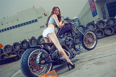 Moto Harley-Davidson khung do dang 'chan dai den nach' - Anh 2