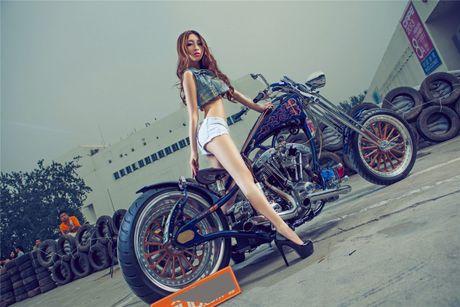 Moto Harley-Davidson khung do dang 'chan dai den nach' - Anh 3