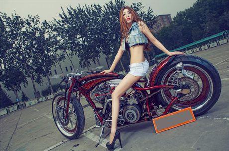 Moto Harley-Davidson khung do dang 'chan dai den nach' - Anh 5