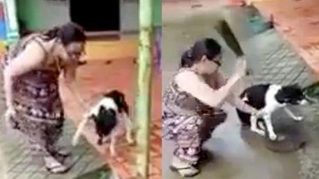 Người phụ nữ chặt chân chú chó dã man lên tiếng: 'Tôi chặt chân để bảo vệ nó'