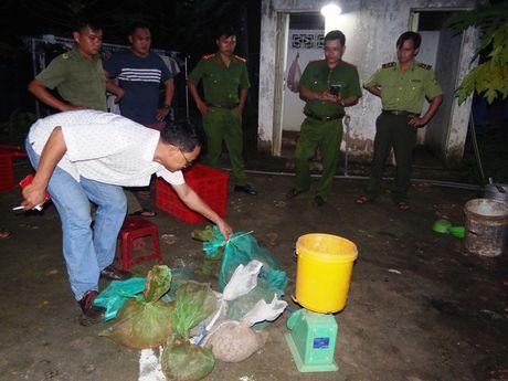 Binh Phuoc: Bat diem chua dong vat hiem so luong lon - Anh 2